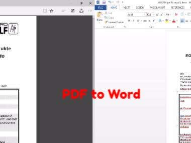 "Covert PDF to Word ""As same as original"""