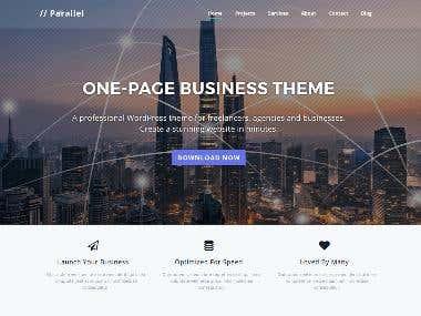 Responsive Web Designing Website