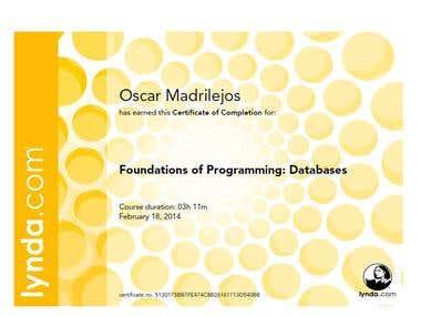 Fundamentals in Programming Databases