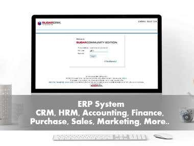 Enterprise Resource Planning (ERP) System Management