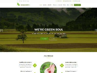 Responsive Web Developing Website
