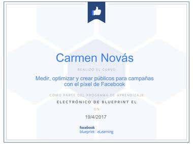 Certificación Facebook Ads