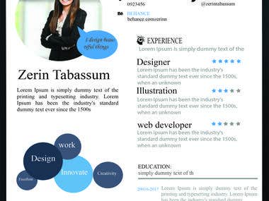 Info graphic Resume