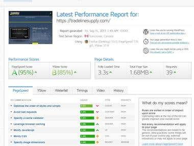 Website Optimizing(speedup)