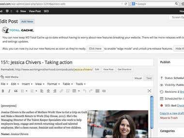 Wordpress content management and SEO.