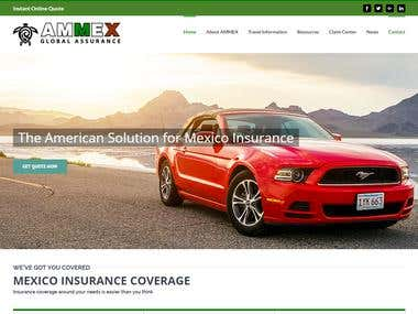 Ammex Global Assurance Website