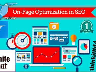I Will Do Professionally On Page SEO For Your Website