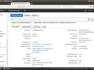 Launch AWS EC2 Instance
