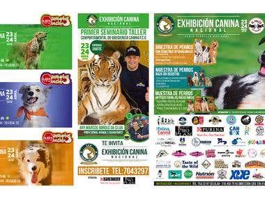 Exhibicion canina nacional 2015