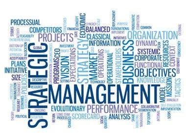 Strategics Management