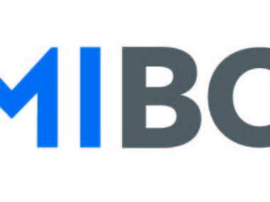 Logo Termibox