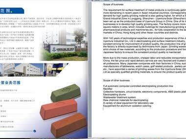 translation of technical document from Chinese to English