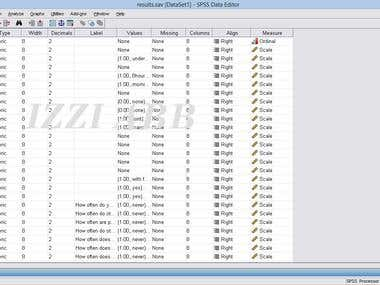 SPSS data sheet