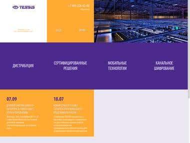 tessis.ru - information security company