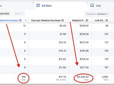 Facebook Ads Purchases Shopify Clothing Store