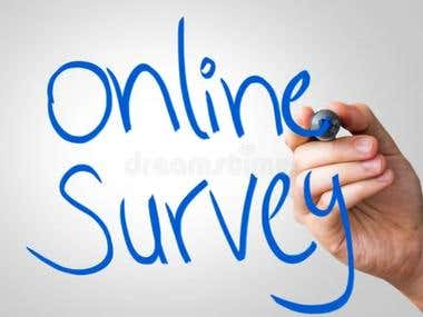 I Will Conduct Your Online Survey With Up To 500 US Consumer