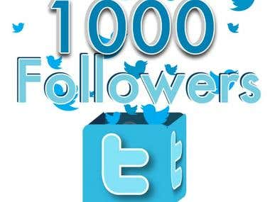 I will give you 100% real Twitter Followers