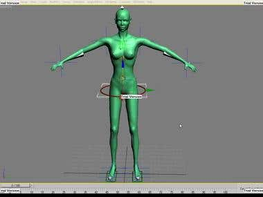 Animation, rigging, modelling
