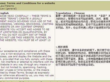 Terms and Conditions for a website (English to Chinese)