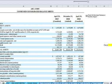 Financial Statements / Consolidated Balance Sheet