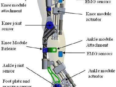 artificial Joint