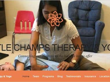 SEO for www.littlechampstherapy.com