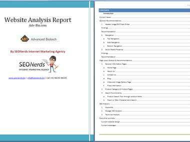 SEO Audit - ADV-Bio.com