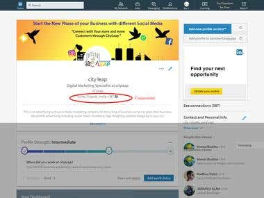 CityLeap - LinkedIn Network