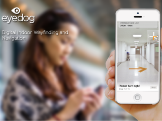 Eye Dog Navigation App (iOS / Android)