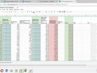 Data Mining / Microsoft Excel / Data Processing