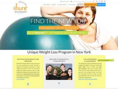 Shane The Fitness Program: Informative Website