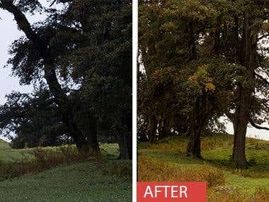 RAW Image retouching