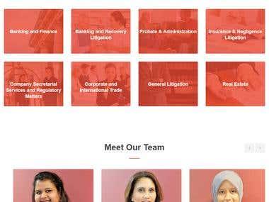 Professionally Law website