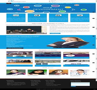 IT Business Website(Leadingitgirls.com)