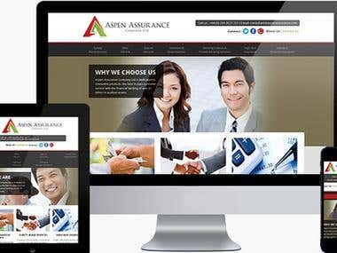 Wordpress Assurance Website