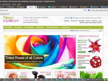 www.flowerexplosion.com