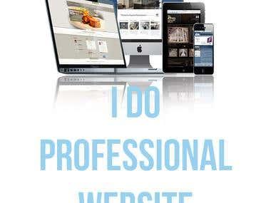 I will do professional website