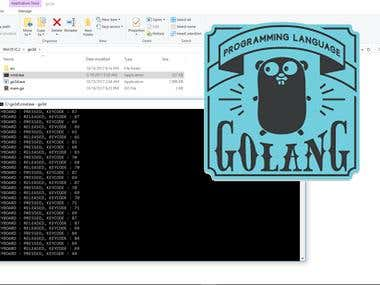 My First Golang Project