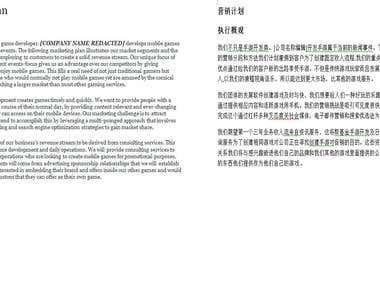 Marketing document English into Chinese