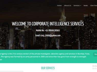 http://corporateintelligenceservices.in/