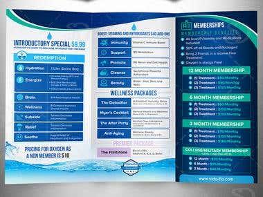 Tri-fold Brochure for Vida Flo