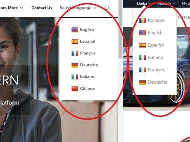 Adding Google translate menu to a WordPress DIVI site