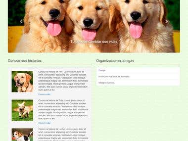 Animal Protection Organization for a school work