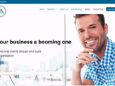 Wordpress Website for Chartered Accountant