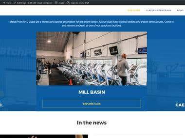 Health site of Wordpress