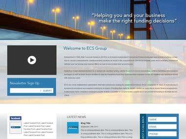 Create a professional web site