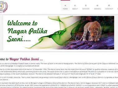 Nagar Palika Seoni