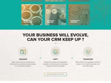 FINANCIAL CRM Website
