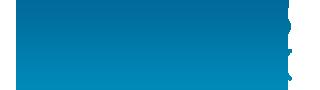 logo dvs designx