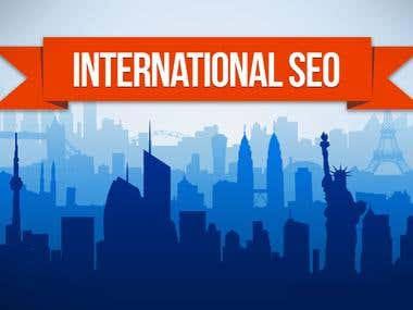 SEO for two international websites